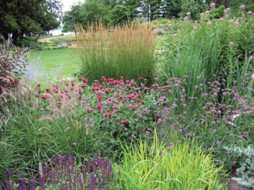 "Garden Inspiration : ""Planting Ornamental grasses…"""
